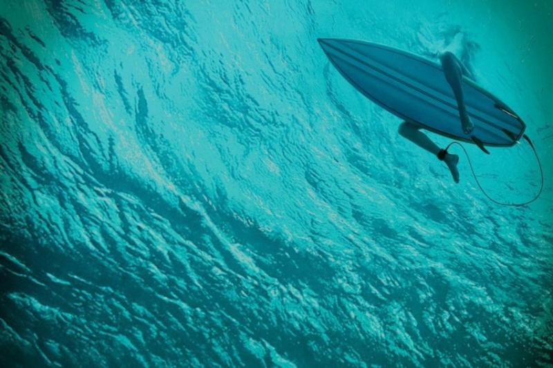 Les bas-fonds avec Blake Lively: un autre film mettant en vedette un méchant requin